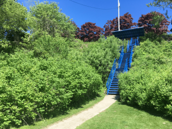 A blue staircase surrounded by plants at North Point Bluff