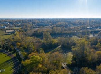 Aerial view of trees near Honey Creek