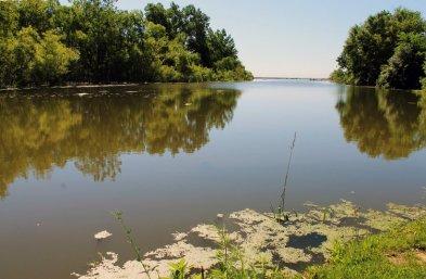 Algal blooms on the Pike River in Kenosha